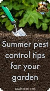 Gardening Pest Control - insect pest control naturally defend your garden against insects