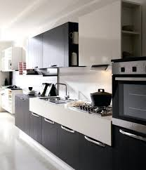Modern Kitchen Cabinet Pictures Best Kitchen Cabinet Features Proxart Co