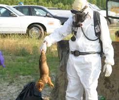 north carolina police detective wearing a hazmat suit getting
