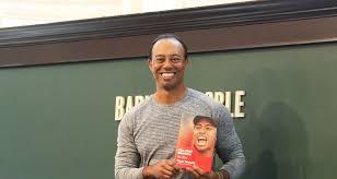 Tiger Woods Memes - tiger woods memes the funniest dui mugshot memes
