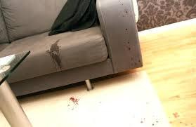 d tacher canap tissu detacher un canape comment d tacher canap en tissu 13 avec nettoyer