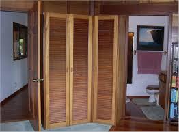 Home Depot Louvered Doors Interior Terrific Pvc Folding Door Home Depot Ideas Ideas House Design