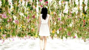 a floating garden in japan where hanging flowers move skyward as
