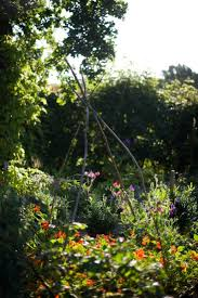 Cottage Garden Farm Garden Visit Camera Ready In The English Countryside At Walnuts