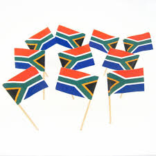 Image Of South African Flag Amazon Com South Africa South African Flag Toothpicks 100