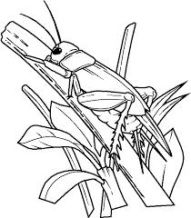 56 dessins de coloriage insecte à imprimer sur LaGuerchecom  Page 5
