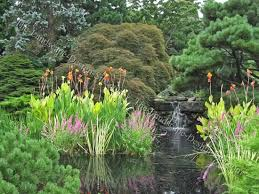 Pond Landscaping Ideas Japanese Garden Pond Planting