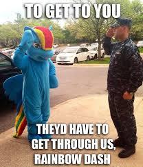 Bronies Meme - 888456 funny furry human irl irl human meme military