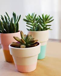 Painting Garden Pots Ideas Color Block Terra Cotta Pots Diy A Beautiful Mess