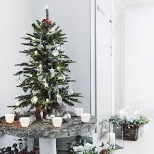 fir christmas tree 3ft the white company christmas