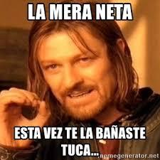 Neta Meme - la mera neta esta vez te la ba繿aste tuca one does not simply