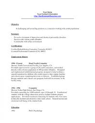 exle sle resume exle of youth resume coach sle counselorsume templates after school