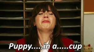 New Girl Meme - new girl jessica day gif find share on giphy