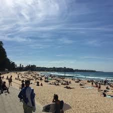 sydney day trips manly beach and shelly beach u2013 wilbur where r u