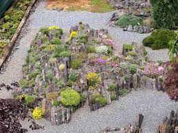 crevice garden for alpines garden design pinterest gardens