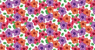 colorful designer featured designer lele prates pattern observer