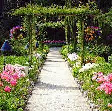 flower garden flower garden digital painting by carol groenen