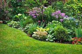 best of perennial garden design tips for growing perennial flower
