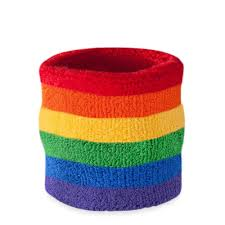 sweat band rainbow sweatband wristband suddora