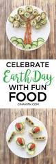 226 best teaching u0026 food images on pinterest nutrition