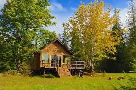 small house in the pond cottage an idyllic retreat surrounded by nature small