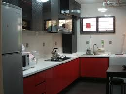 novel modern kitchen designs with red and white cabinets from