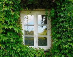 Schlafzimmer Fenster Nass Richtig Heizen Im Winter 21 Grad