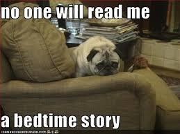 Sad Pug Meme - i has a hotdog melancholy funny dog pictures dog memes puppy