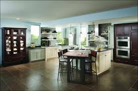 schuller kitchen cabinets furniture awesome kith kitchen cabinets medallion cabinets