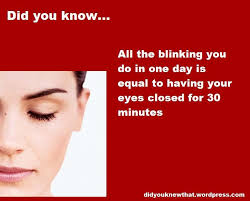 60 best did you images on random facts
