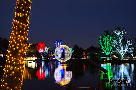 phoenix zoo lights tickets top holiday festivals upcoming events in phoenix 2015 lux home