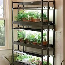 indoors garden 11 fresh ideas for growing food indoors slide 11 ifairer com