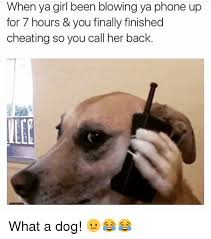 Dog On Phone Meme - when ya girl been blowing ya phone up for 7 hours you finally