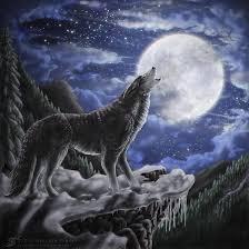 wolf moon by zaellrin on deviantart