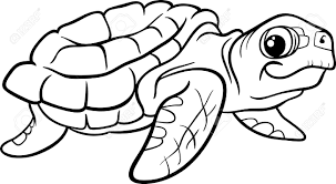 coloring book turtle feraliminal turtle thinking black white line