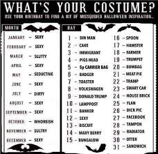 halloween hamster costume this halloween costume decider help you choose an based on