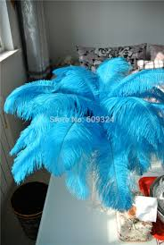 Where To Buy Ostrich Feathers For Centerpieces by Compare Prices On Ostrich Feather Centerpieces Online Shopping