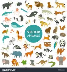 collection animals world vector illustration simple stock vector