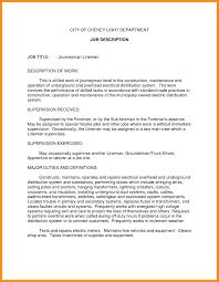 Sample Ceo Resumes 12 Sample Job Description Resume Setups