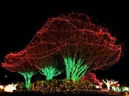 simple outdoor christmas lights ideas diy christmas lights decor gpfarmasi df46c10a02e6