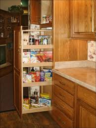 Sliding Shelves For Kitchen Cabinets Kitchen Sliding Shelves Kitchen Cupboard Organizers Pull Out