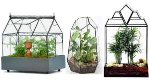 top 10 best terrariums and wardian cases for your home heavy com