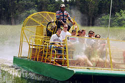 fan boat tours miami miccosukee indian village and airboat rides