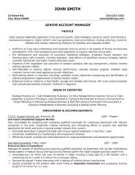 executive resume templates word aflac account executive resume account executive resume exles