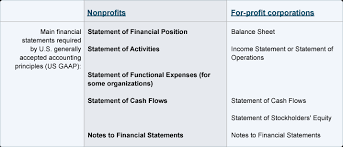 Financial Statements For Non Profit Organizations Exle by Non Profit
