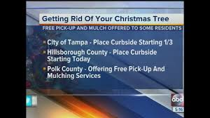 Waste Management Christmas Tree Pickup by Christmas Tree Recycling Options For Tampa Bay Cities And Counties
