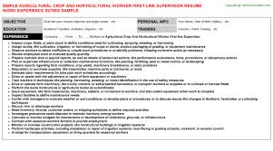 Job Description On Resume Work And Travel Usa 2017 Resume Save Our Mother Earth Essay Best