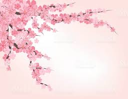 cherry blossom tree clip art vector images u0026 illustrations istock