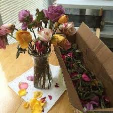 flower delivery express reviews flower delivery express 30 reviews florists az