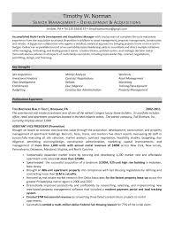It Resumes Samples Real Estate Developer Resume Sample Real Estate Developer